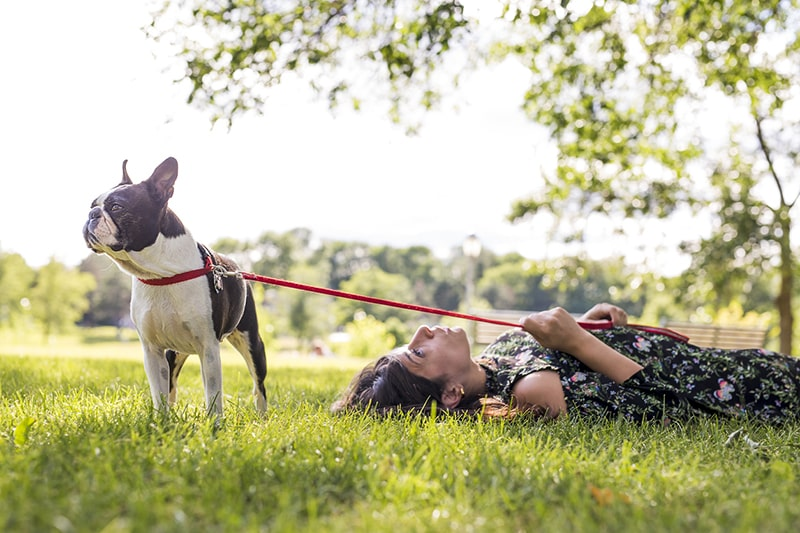 Adopting a Rescue Dog _ The Ins and Outs and What to Expect _ ASPCA Pet Health Insurance _ woman holding on to the red leash of a boston terrier in a park