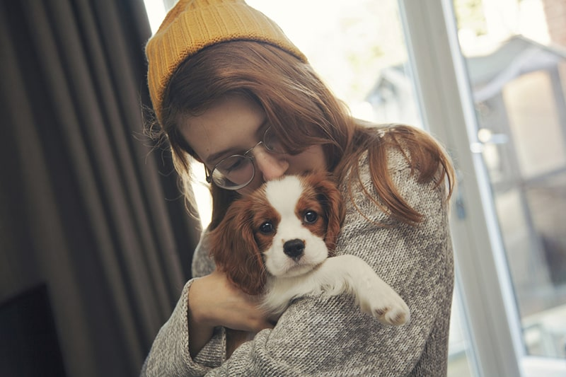 what kind of dog to adopt _ teenage girl in a yellow hat cuddling a cavalier king Charles spaniel