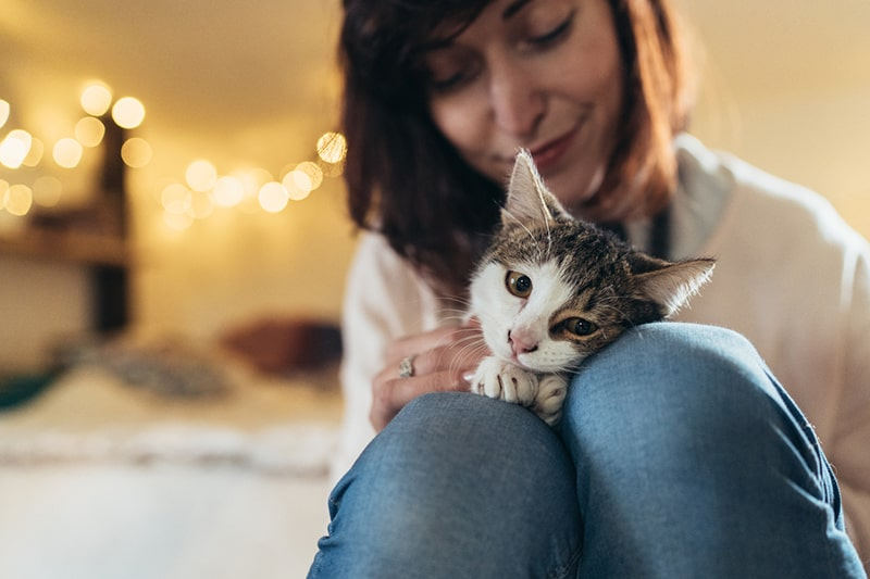 healthy diet tips for cats _ woman cuddling a cat on her lap