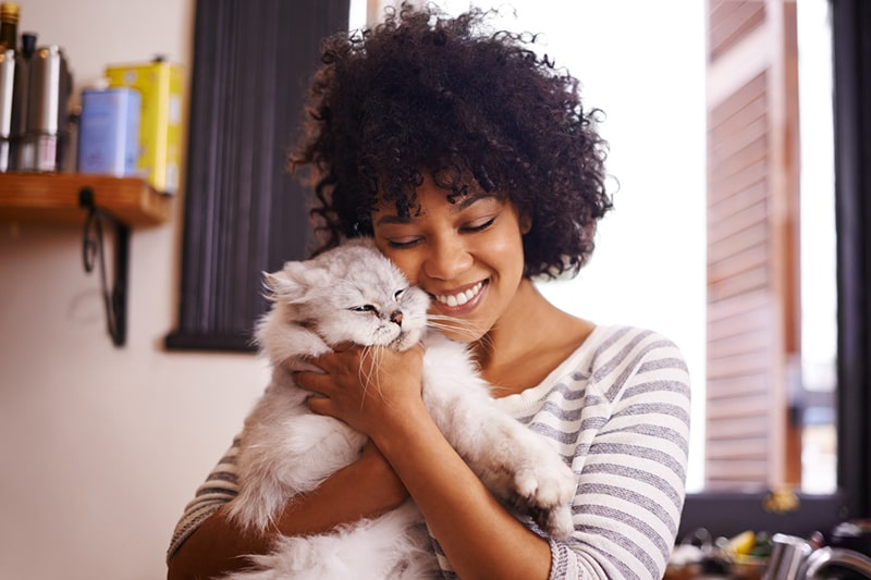 physical attributes of Persian cats _ woman holding a white and gray persian cat