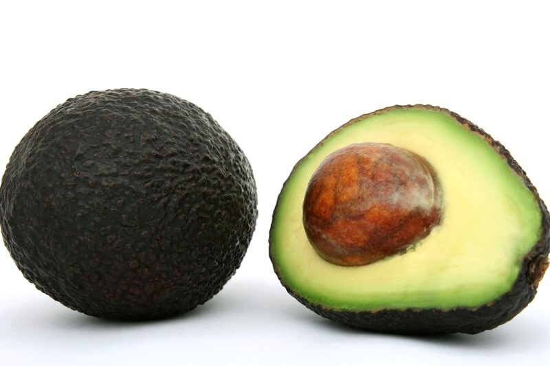 why dogs shouldn't eat avocados