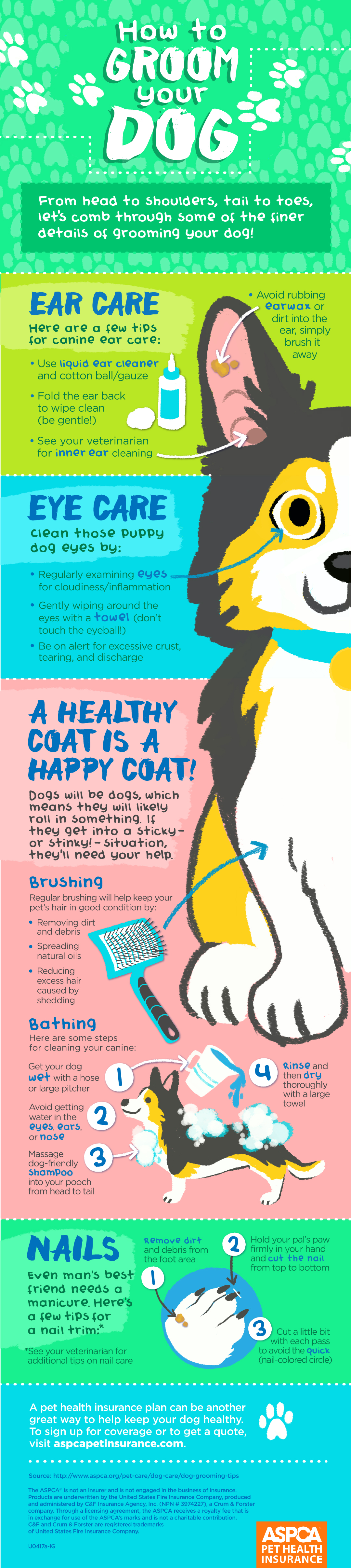 Image result for Care For Your Dog The Easy Way. Check Out This Advice Today! infographics