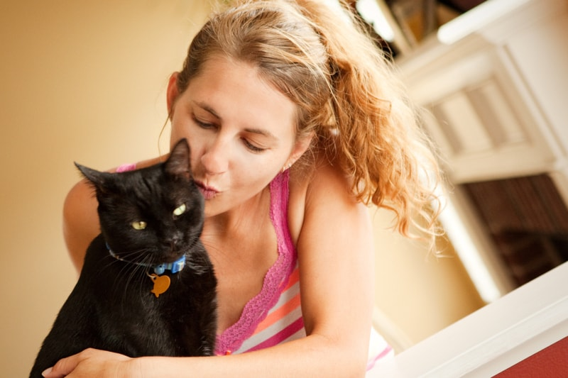 How to Socialize Your Cat