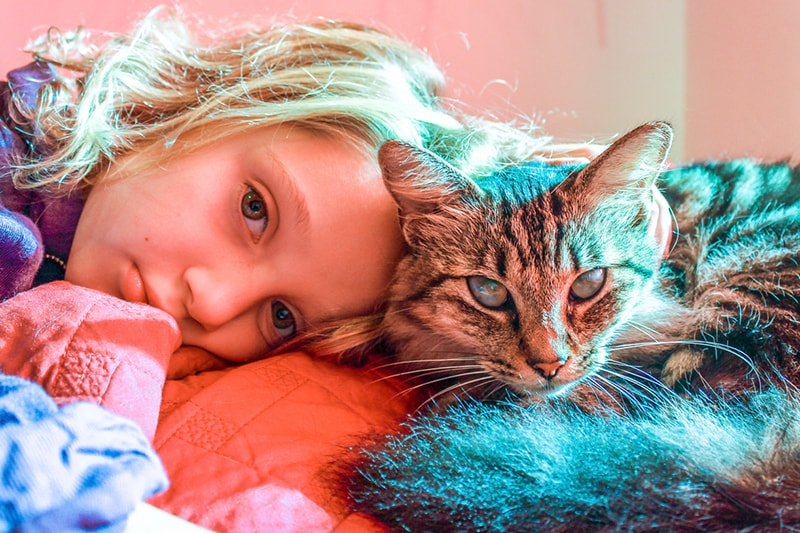 what to know about children and pet loss _ tabby cat cuddling with little girl