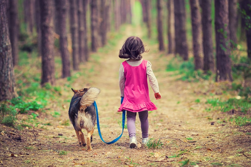 fun activities for kids and pets _ girl walking dog in the woods