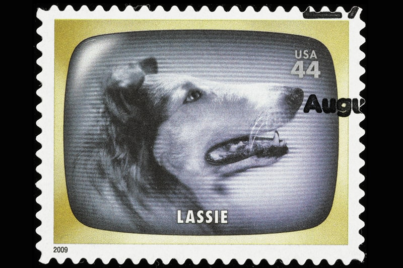 famous movie star dogs _ United States Lassie postage stamp