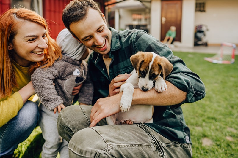 pet adoption during covid 19 coronavirus lockdown quarantine _ family playing with a puppy in a backyard