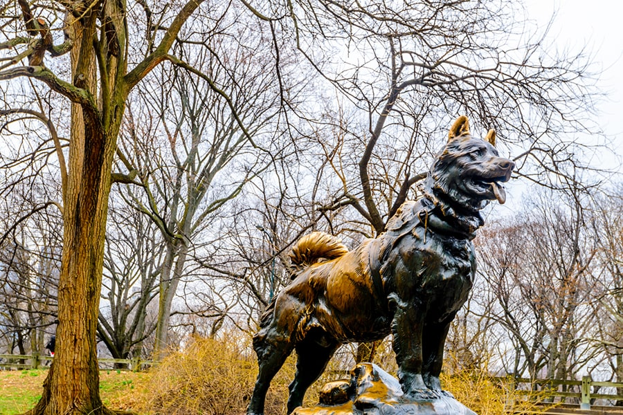 statue of balto the dog in central park in new york city