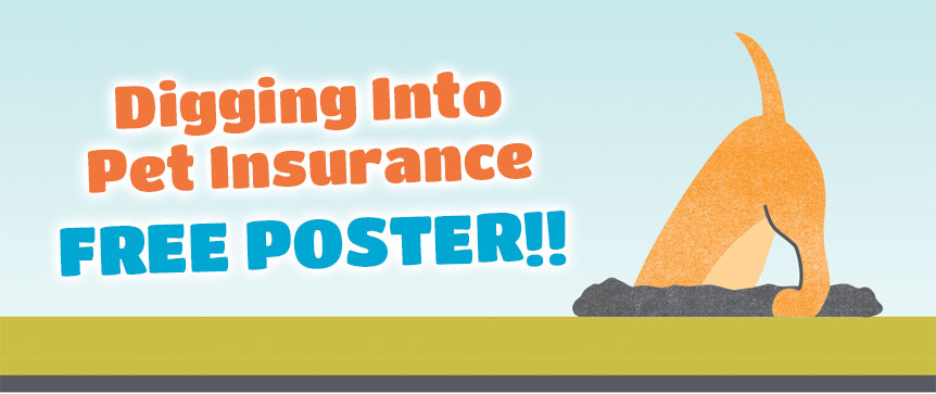 Order Your Free  Digging Into Pet Insurance Poster