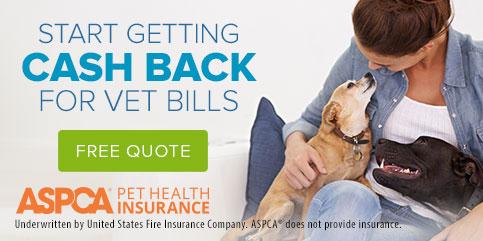 ASPCA-Pet-Insurance-483X241