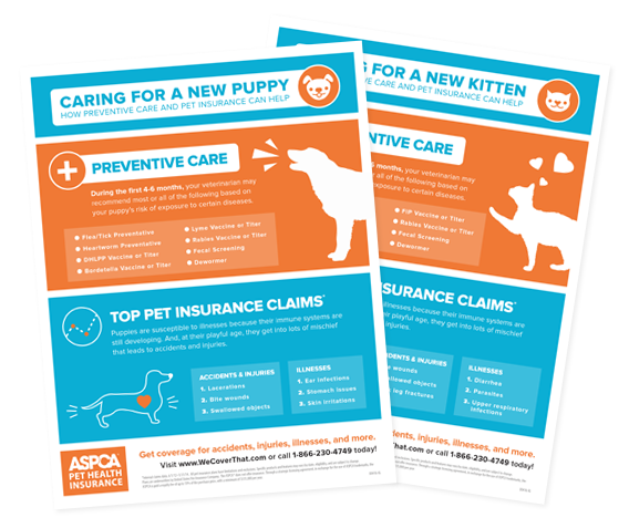 Caring for a new