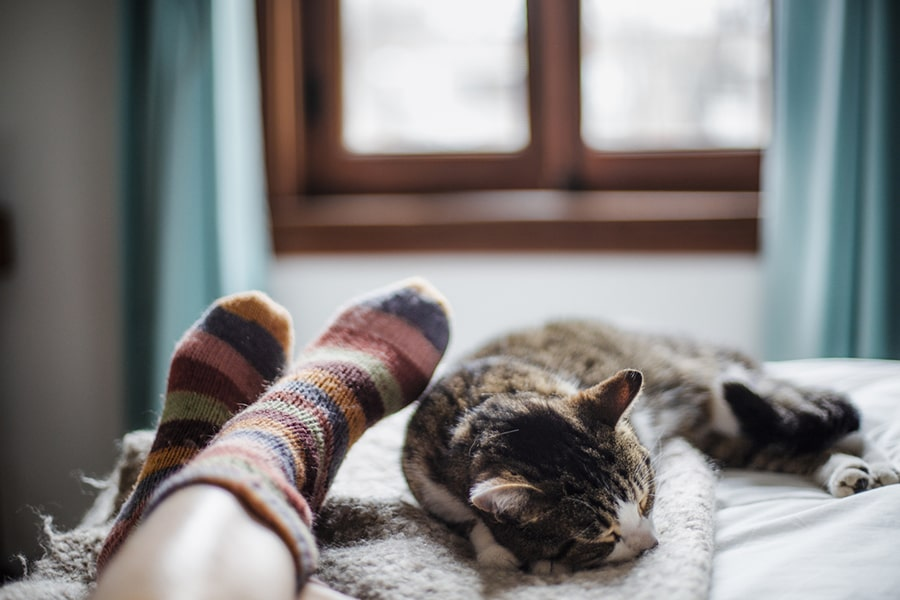 cat sleeping at the foot of the bed next to a woman wearing striped socks