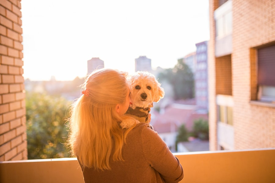 woman holding a dog on an apartment balcony at sunset