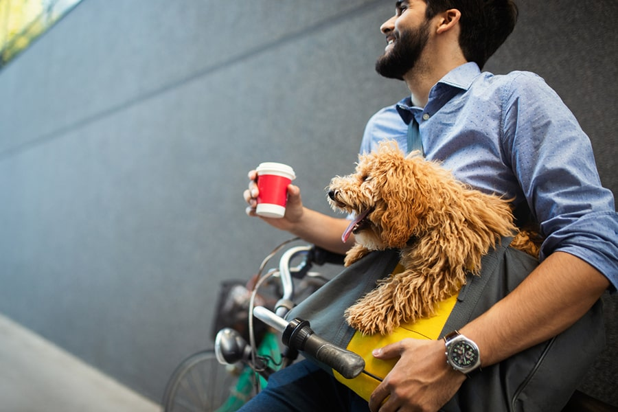 business man on street drinking coffee with dog