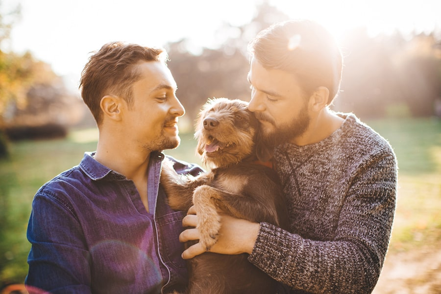 two men cuddling their dog in a meadow