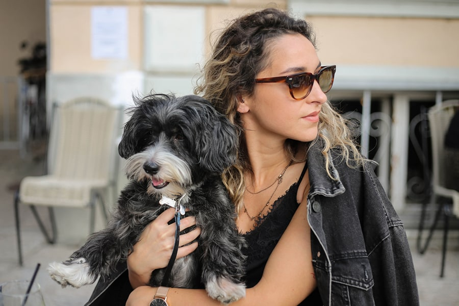 small dog held on an outdoor patio by woman in a black jean jacket