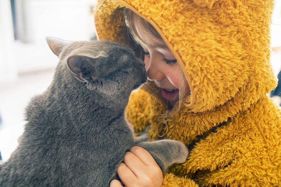 gray cat booping noses with a child in a fluffy orange bear onesie