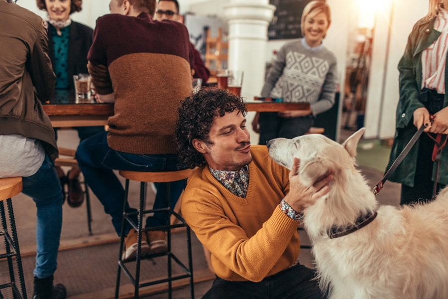 man with curly hair playing with a large dog while having drinks with friends