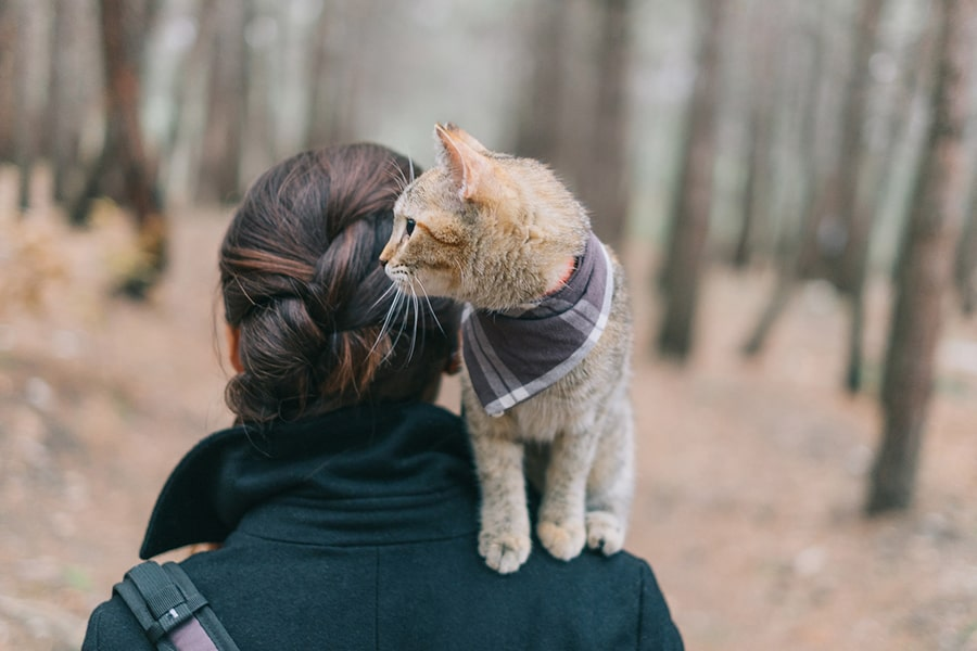 young brunette woman walking in the woods with a ginger cat in a plaid bandana on her shoulder