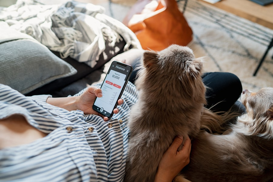 woman in a blue striped shirt checking her bank account while two small dogs rest next to her on a couch